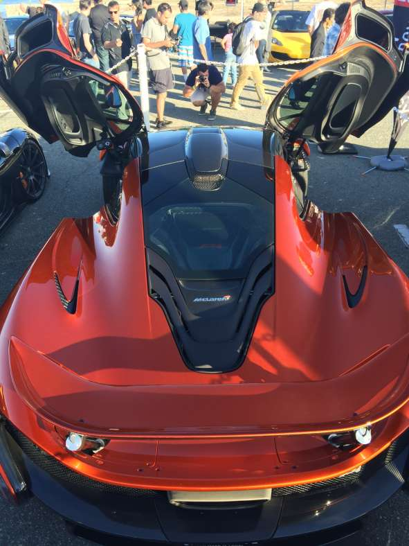 exotics on cannery row (15)