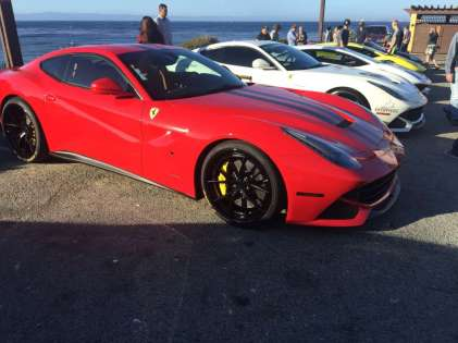 exotics on cannery row (17)