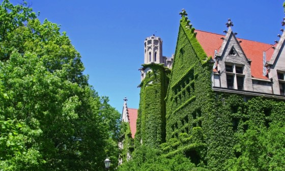 best college communities in chicago feature image
