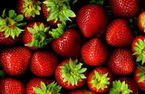 Elsanta Strawberries