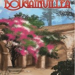 [SNEAK PEEK] BOUGAINVILLEA