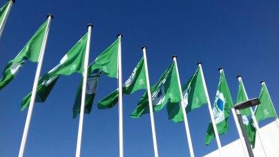 Hastear da Bandeira Verde 2017