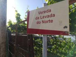 Passeio pela Levada do Norte @ EB1/PE da Marinheira