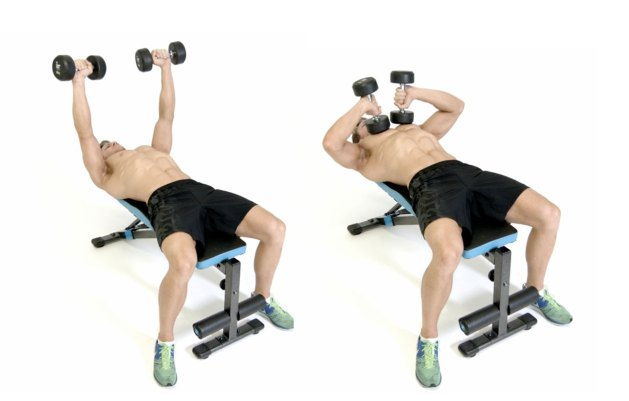 tate press 1024x652 - 5 Exercises to Set Your Arms on Fire
