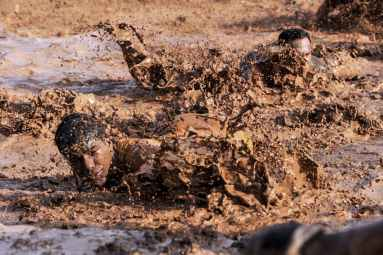 soldiers navigating through the mud