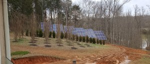Solar In Action: Michael in Knoxville, Tennessee