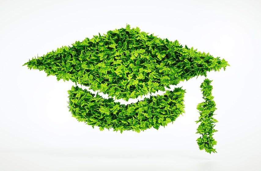 Pourquoi enseigner le développement durable en école de commerce ?