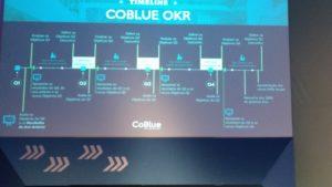 OKRs - Coblue