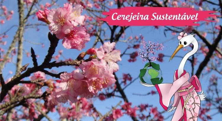 Ações sustentáveis no evento Cerejeiras Festival