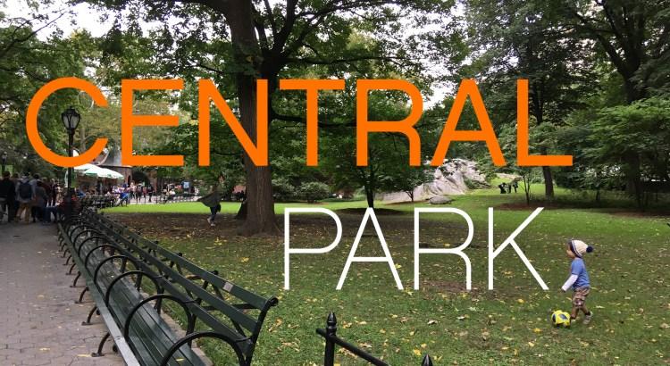 Imagem mostra uma criança brincando com bola na grama do Central Park com árvores ao fundo