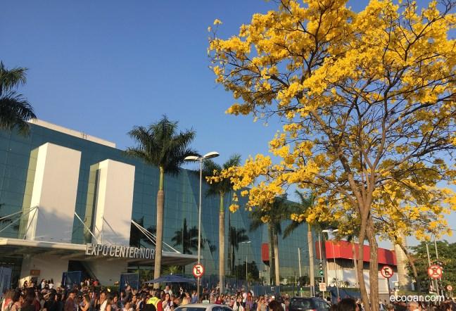 Foto mostra entrada do Expo Center Norte em São Paulo, com uma árvore de Ipê amarelo em flor