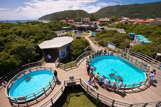 Foto mostra Centro de visitantes do projeto TAMAR em Florianópolis
