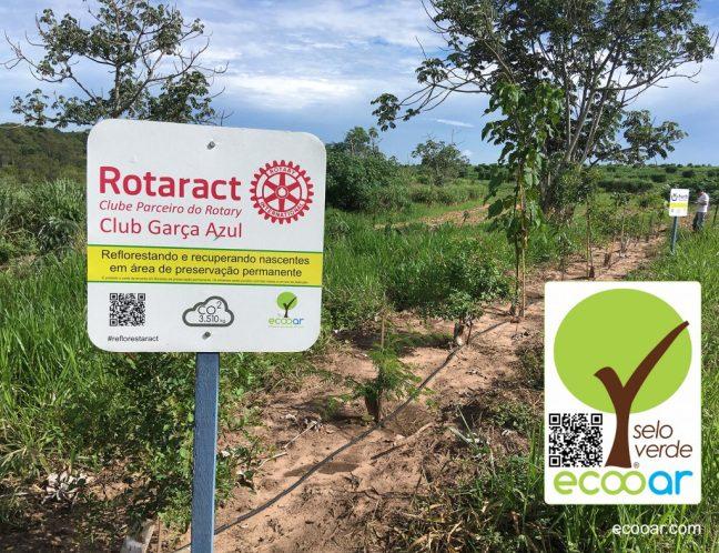 Foto mostra área de reflorestamento Rotaract com placa de idenficacação
