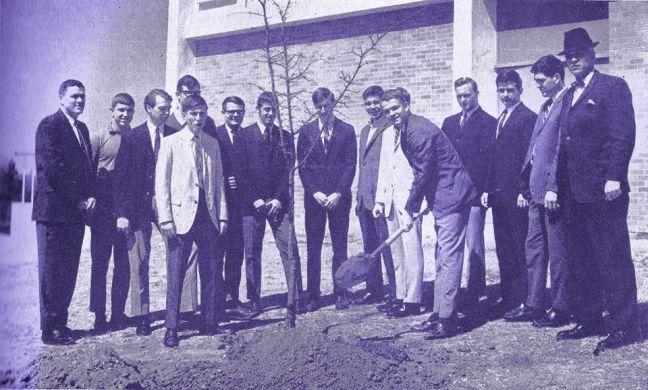 Foto mostra pessoas do Rotaract plantando uma árvore