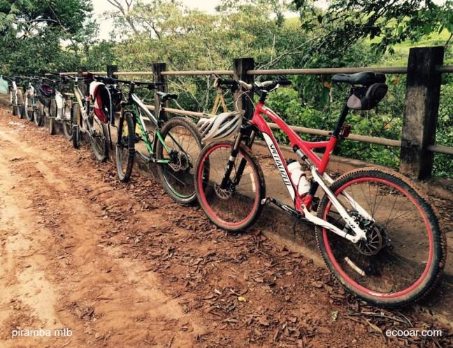 Foto mostra bicicletas sobre uma ponte com a mata ao fundo