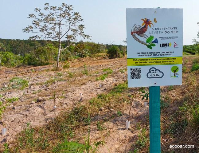 """Foto mostra área de reflorestamento com placa da série """"A sustentável leveza do ser"""""""