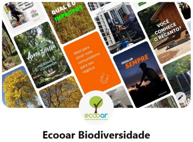 Imagem mostra print da rede social Pinterest da Ecooar