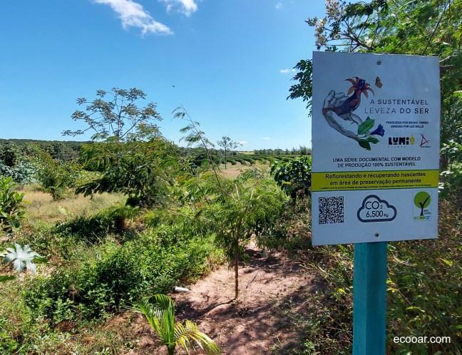 Foto mostra A Sustentavel Leveza do Ser - Reflorestada
