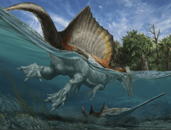 An artist's rendering of spinosaurus and the river ecosystem that existed 100 million years ago in what is now the Sahara Desert. Artwork: Davide Bonadonna, advised by Nizar Ibrahim and Simone Maganuco.