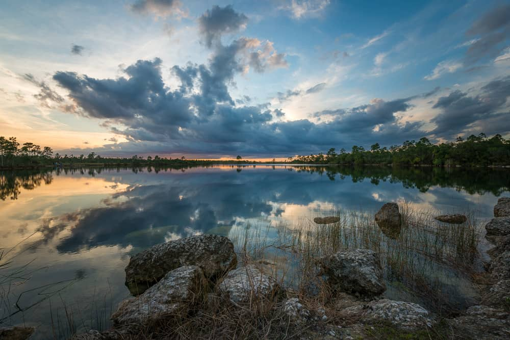Pine Glades Lake Everglades Florida