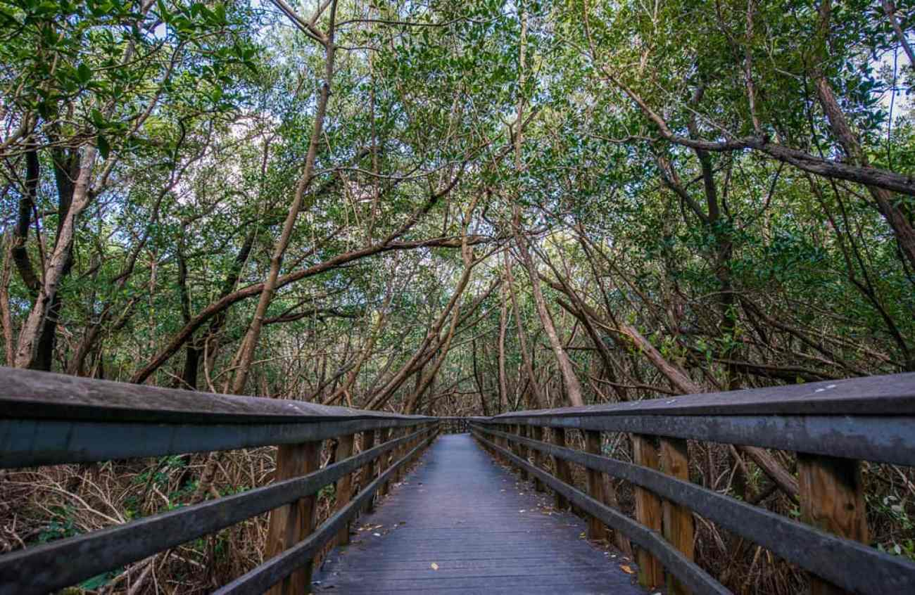 best places to shoot at the everglades florida