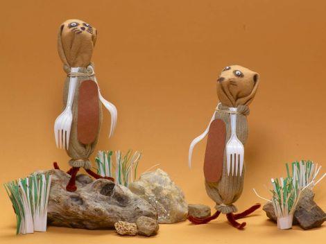 meerkat for blog