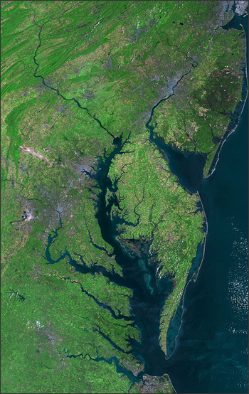 Seawater from the Early Cretaceous North Atlantic Ocean—about 100 million years old—was discovered near Cape Charles, Virginia. Cape Charles is near the tip of the Delmarva Peninsula, beautifully visualized in this mosaic of five satellite images. Image courtesy NASA/USGS/Landsat 5