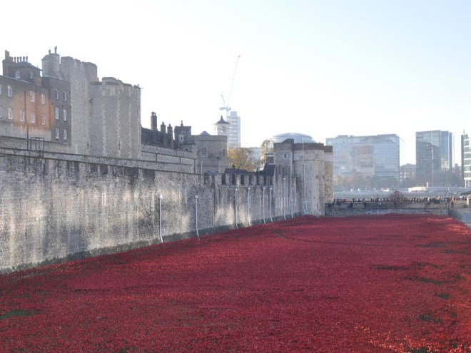 By November 2014, the Tower's moat is filled with poppies. Photograph by The Land, courtesy Wikimedia. (CC BY-SA 4.0)