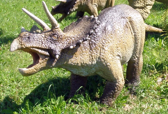 This model of a Triceratops is part of the Jurassic Park Balts, a theme park in Balts, Poland. Photograph by Alina Zienowicz, courtesy Wikimedia. CC-BY-SA-3.0