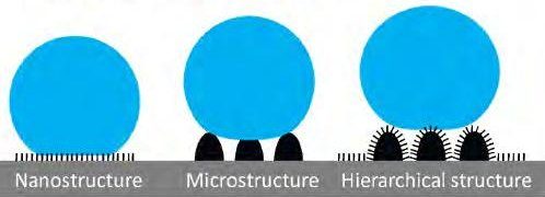 This nice illustration displays the hierarchical structure achieved by the laser-etching. A hierarchical structure combines microstructure roughness with nanoscale roughness. Illustration by Munir.ashraf, courtesy Wikimedia. CC0 1.0 Universal Public Domain Dedication