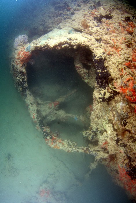 This image shows the coral-encrusted cockpit of a PBY-5 Catalina seaplane that was sunk during the attack on Pearl Harbor, Hawaii, on December 7, 1941. Photograph courtesy University of Hawaii Option Program and NOAA