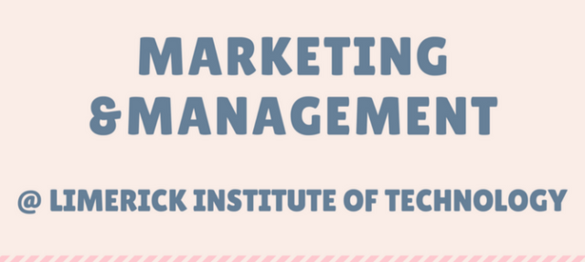 Infographic: Marketing & Management at LIT