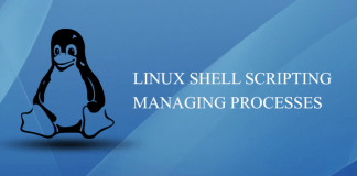Linux Shell Scripting Managing processes