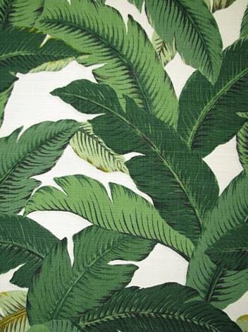 palm leaf fabric