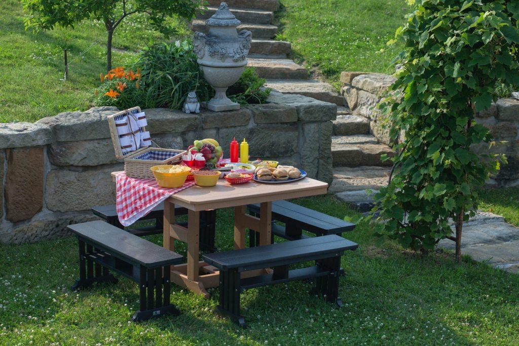 organizarea unui picnic