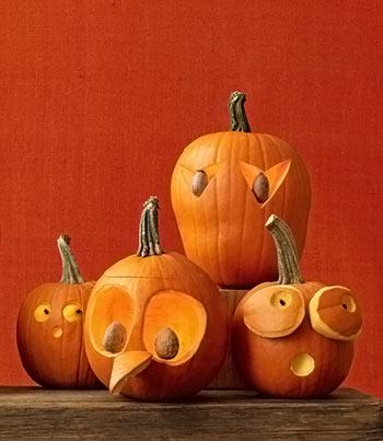 aboboras-halloween-2