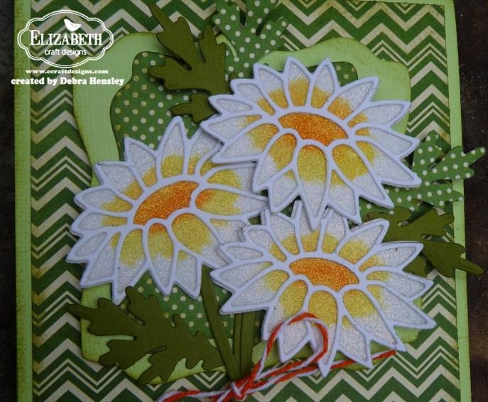 ECD daisy closeup 1a P1060557
