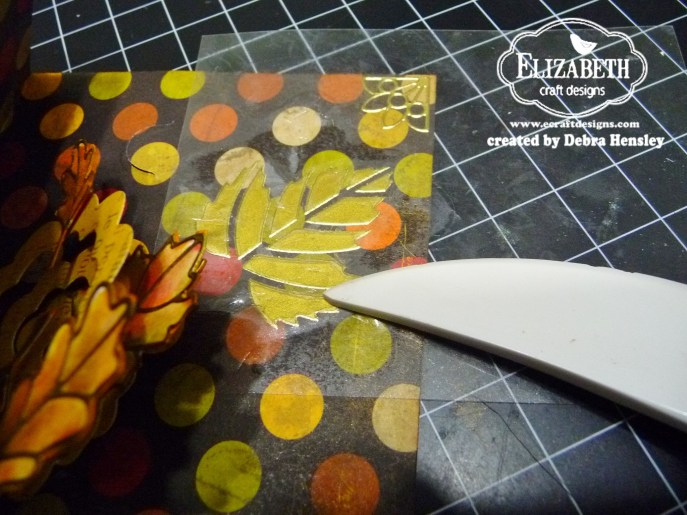 ECD Oct leaf trans 1a P1070100