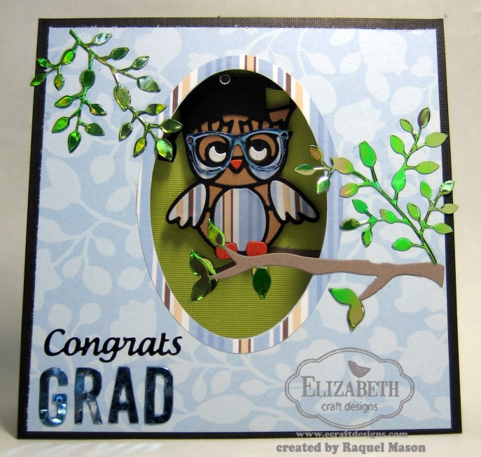 ECD owl