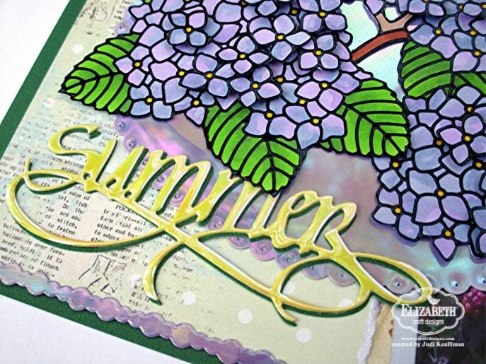Summer Hydrangeas B