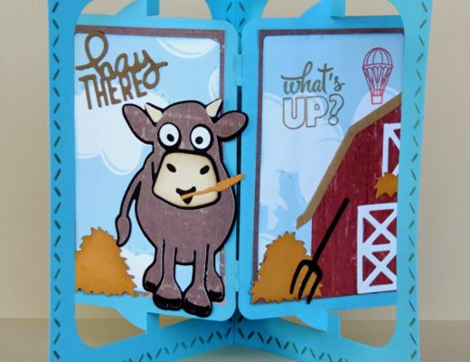 Pop it Ups Wednesday with Sandy - What's Up?