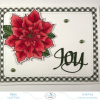 Poinsettia Joy