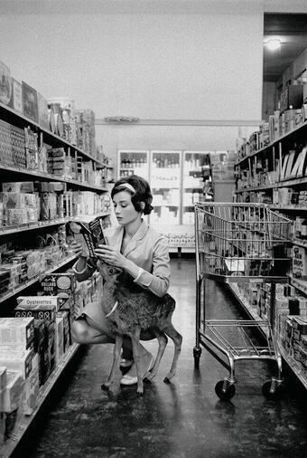 4. Audrey Hepburn haciendo las compras con su ciervo mascota, en Beverly Hills, 1958.
