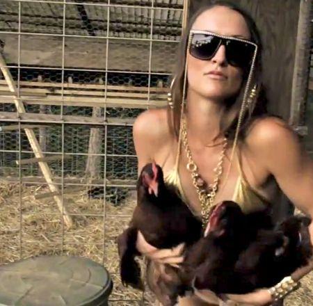 8. ¿Los pollos prefieren humanos lindos?