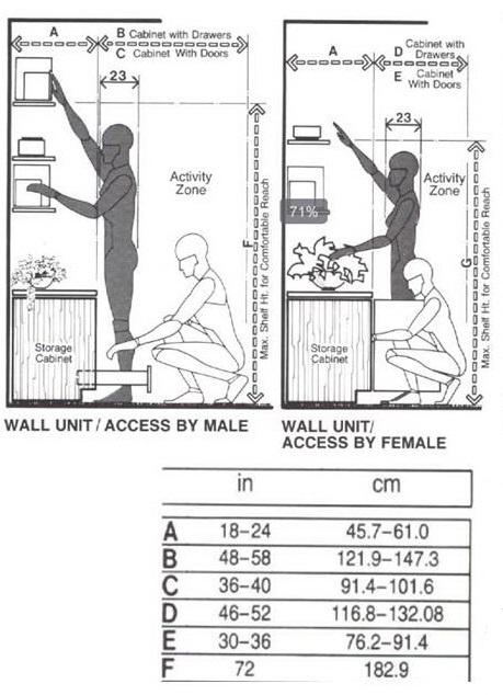 14. La altura recomendada de los estantes varía para hombres y mujeres: