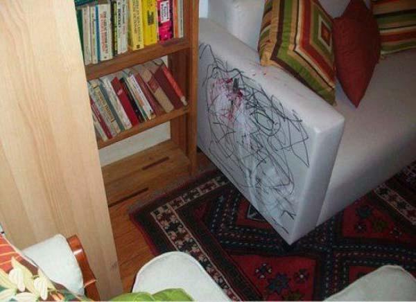 2. Eso pasa cuando lo dejan ver utilísima, el chico se cree decorador de interiores.