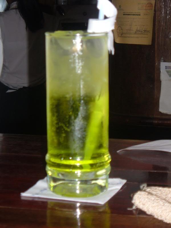 23. Piel de iguana