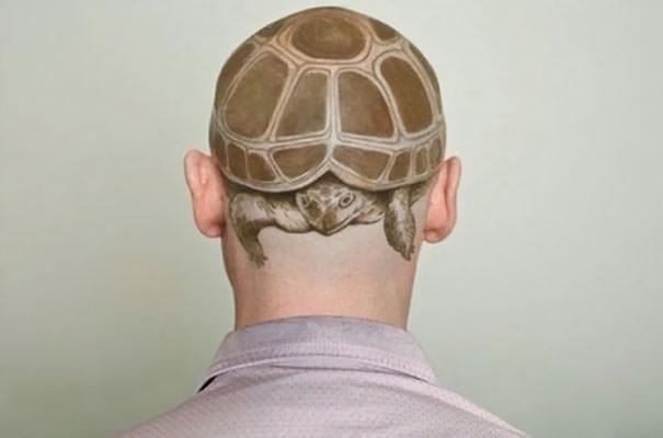 Turtle Head