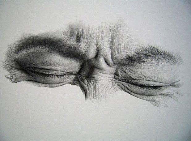 desenho grafite