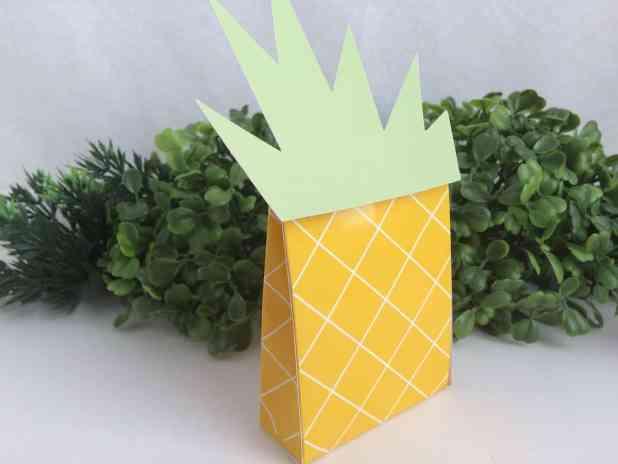 festa tropical abacaxi